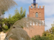 2012_barcelona012