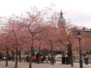 2014-04_stockholm006