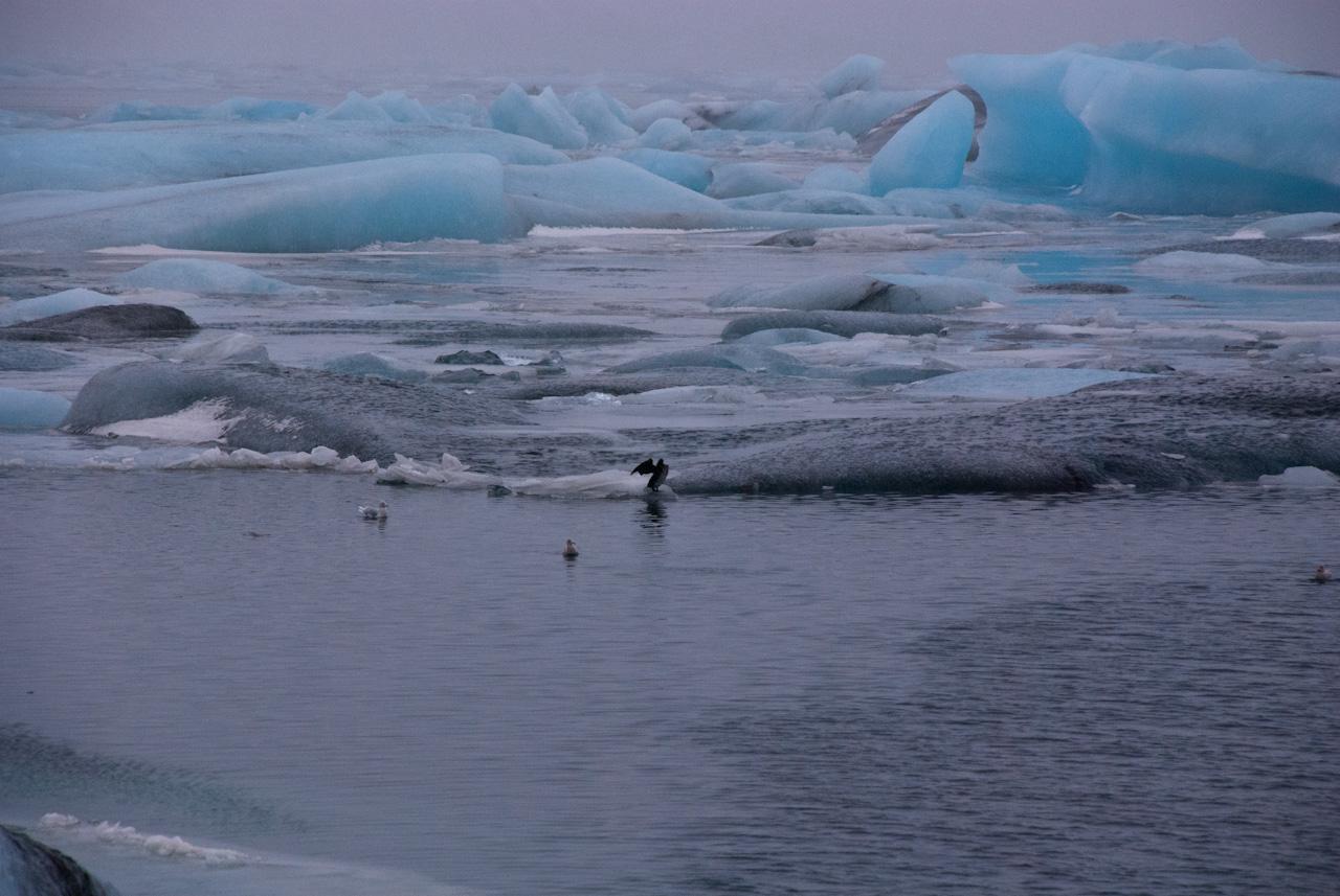 2015-02_iceland081-jpg