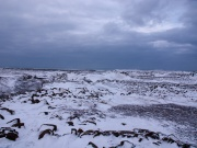 2015-02_iceland219-jpg